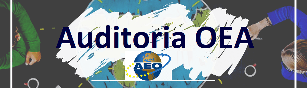 auditoria interna OEA
